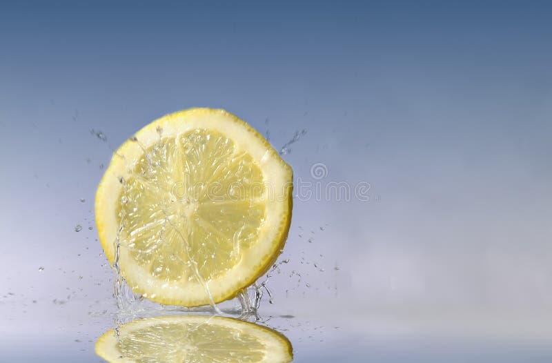 Lemon (Citron) stock photos