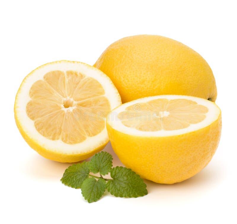 Lemon and citron mint leaf. Isolated on white background stock image