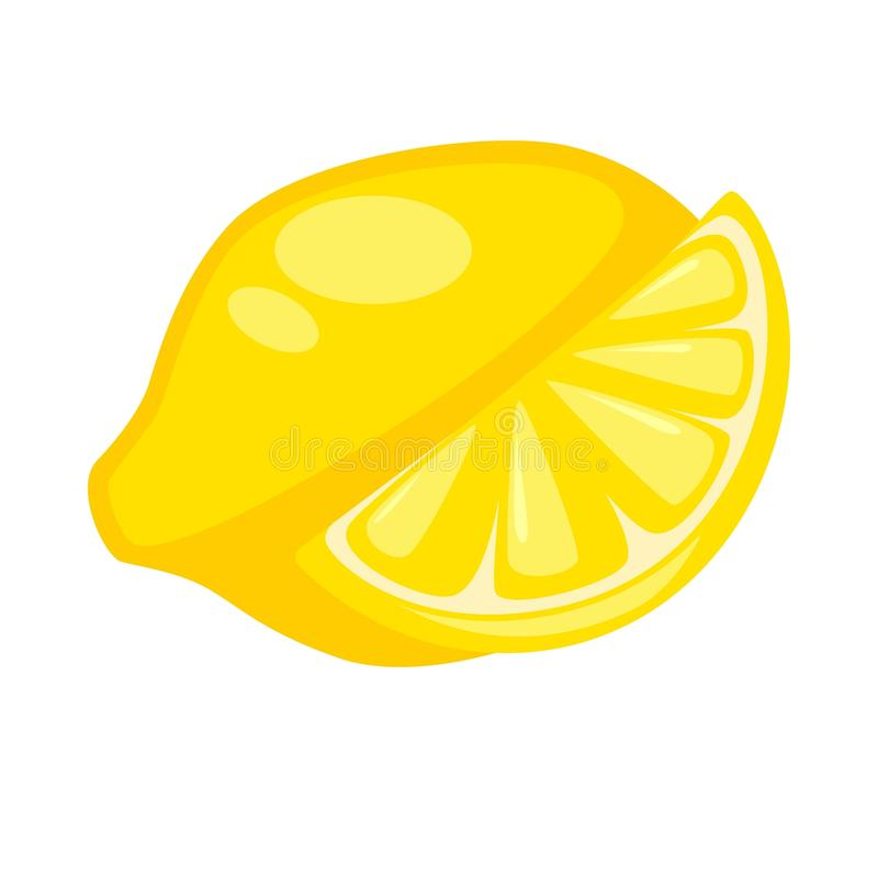 Lemon citron whole and half isolated on white. Yellow citrus. Lemon or citron whole and half isolated on white. Yellow large fragrant citrus fruit used for vector illustration