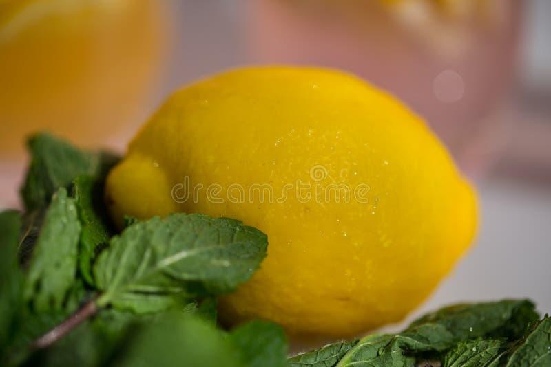 Lemon in close-up, fresh fruits. Summer, studio royalty free stock images