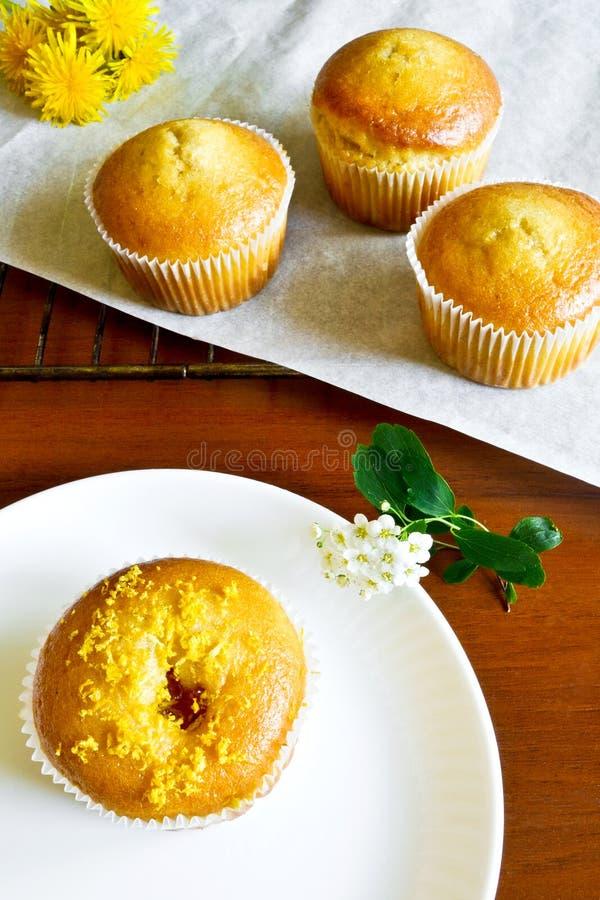 Lemon cupcakes royalty free stock image