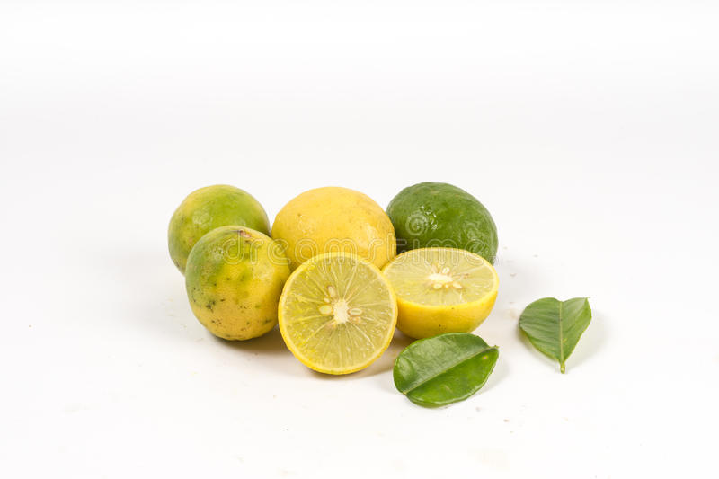 Download Lemon cut with leaves stock illustration. Illustration of isolated - 68471425