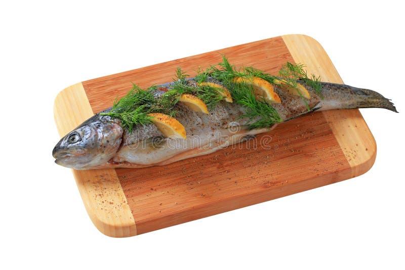 Lemon dill trout stock photography