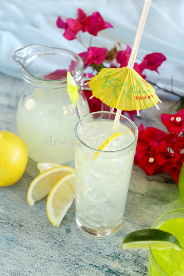 Download Lemon Drink stock photo. Image of nutrition, slices, thirsty - 23506746
