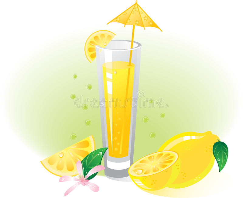 Download Lemon fruit and drink stock vector. Image of freshness - 12997682