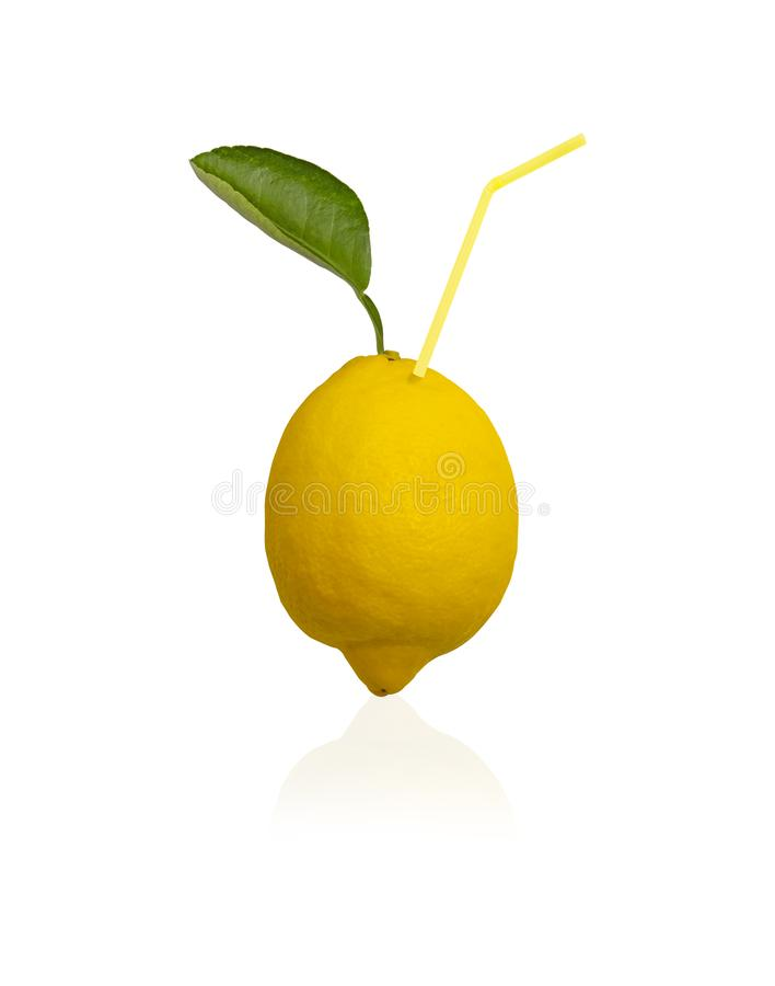 A Lemon fruit isolated on white background, die cut with clipping part, fresh yellow ripe lemons fruits and green leaf royalty free stock photo