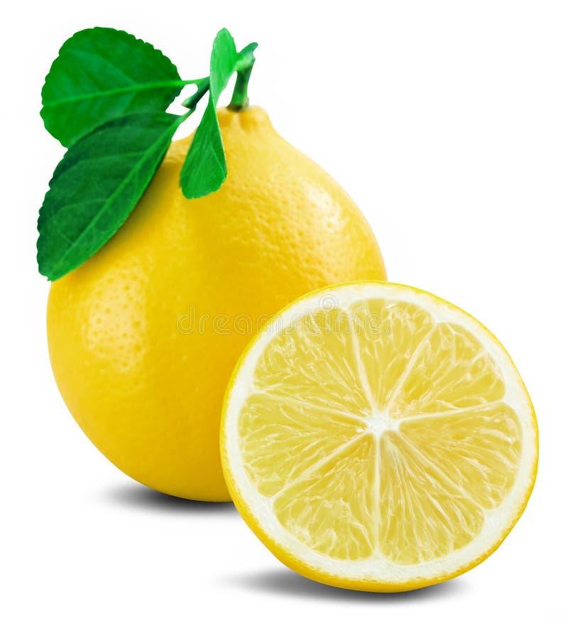 Lemon fruit leaf stock image