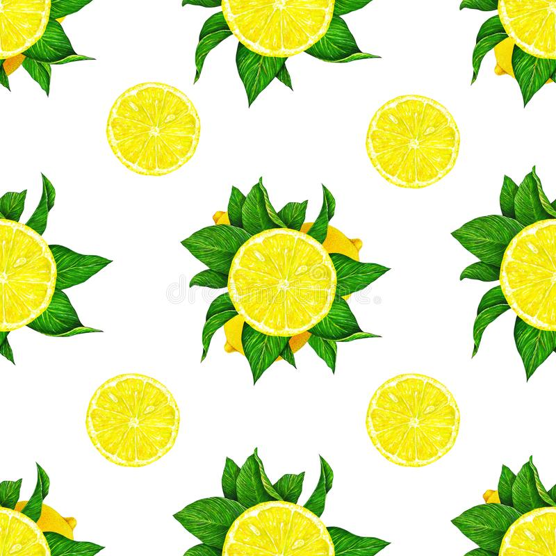 Lemon fruits with green leaves isolated on white background. Watercolor drawing seamless pattern for design. royalty free stock photography