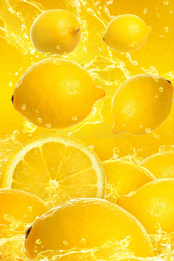 Lemon stock photography