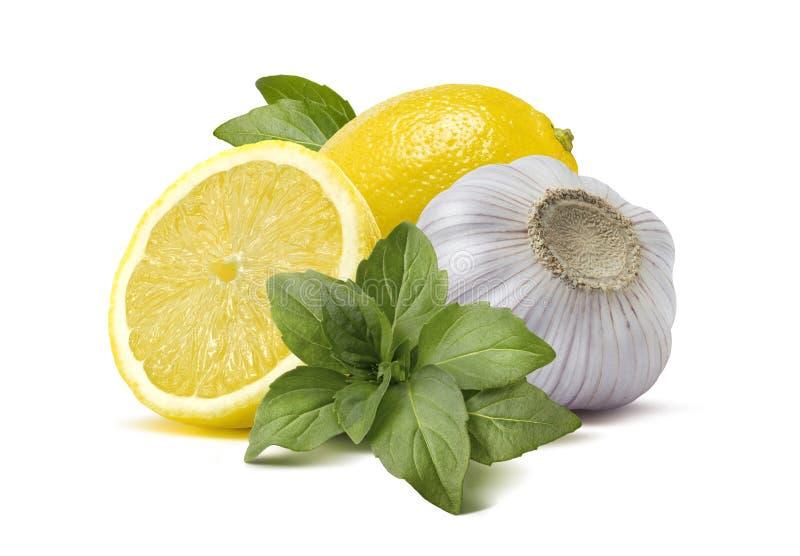 Lemon garlic basil pesto cooking ingredients isolated on white b. Lemon garlic basil pesto cooking ingredients 2 isolated on white background as package and stock photos