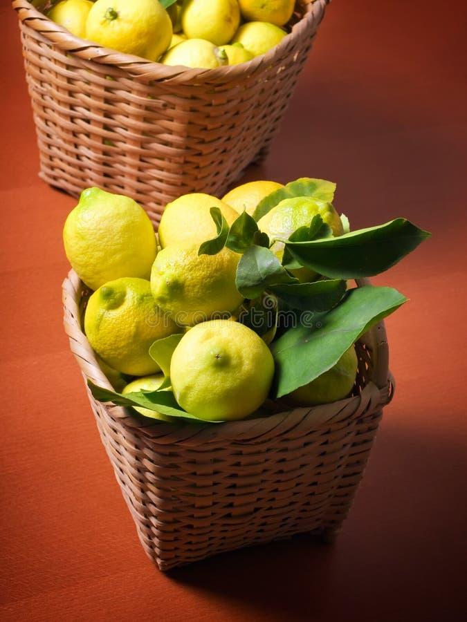 Download Lemon harvest stock photo. Image of harvest, food, close - 12277424