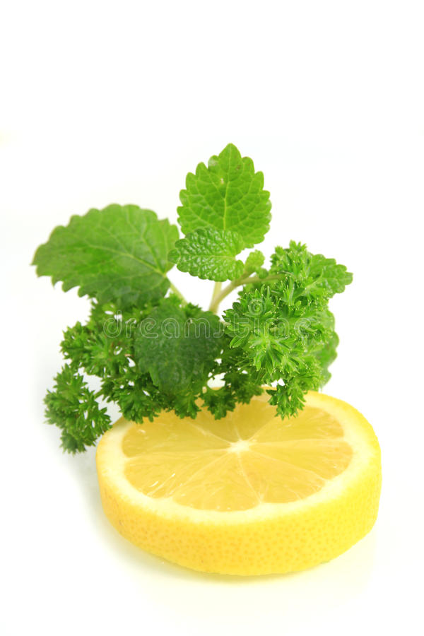 Lemon with herbs stock image