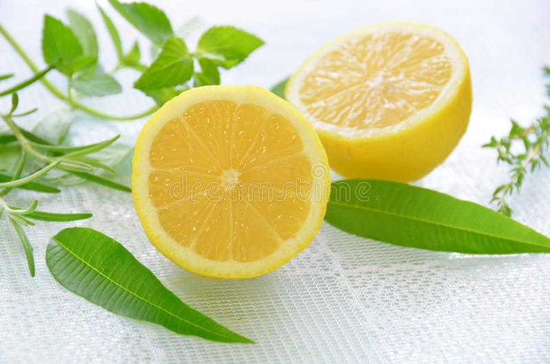 Lemon and herbs royalty free stock photos