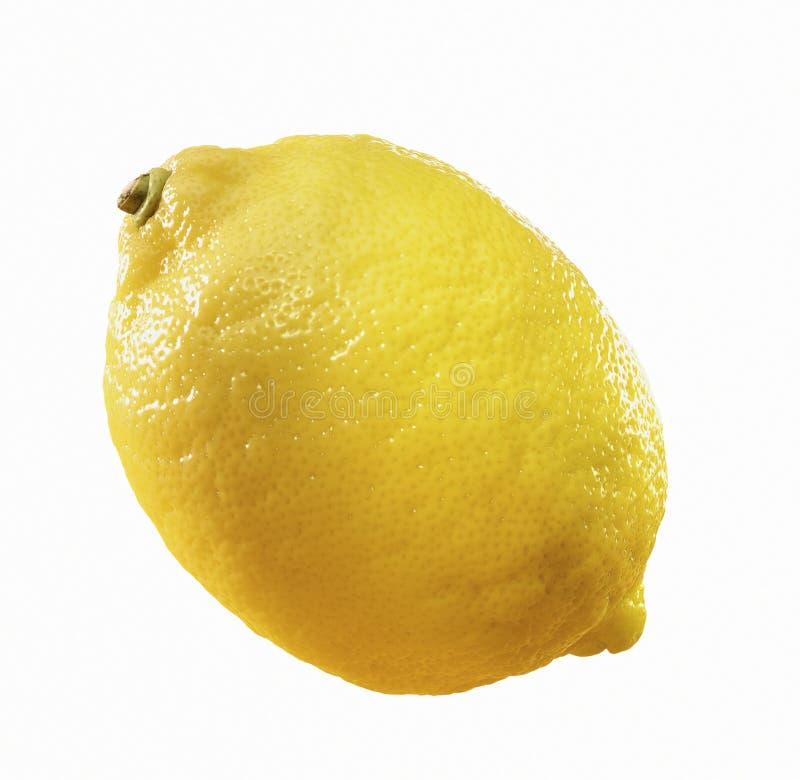 Lemon a.k.a. Citron. Close-up of a citron stock photography