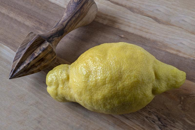 Lemon and lemon squeezer stock image