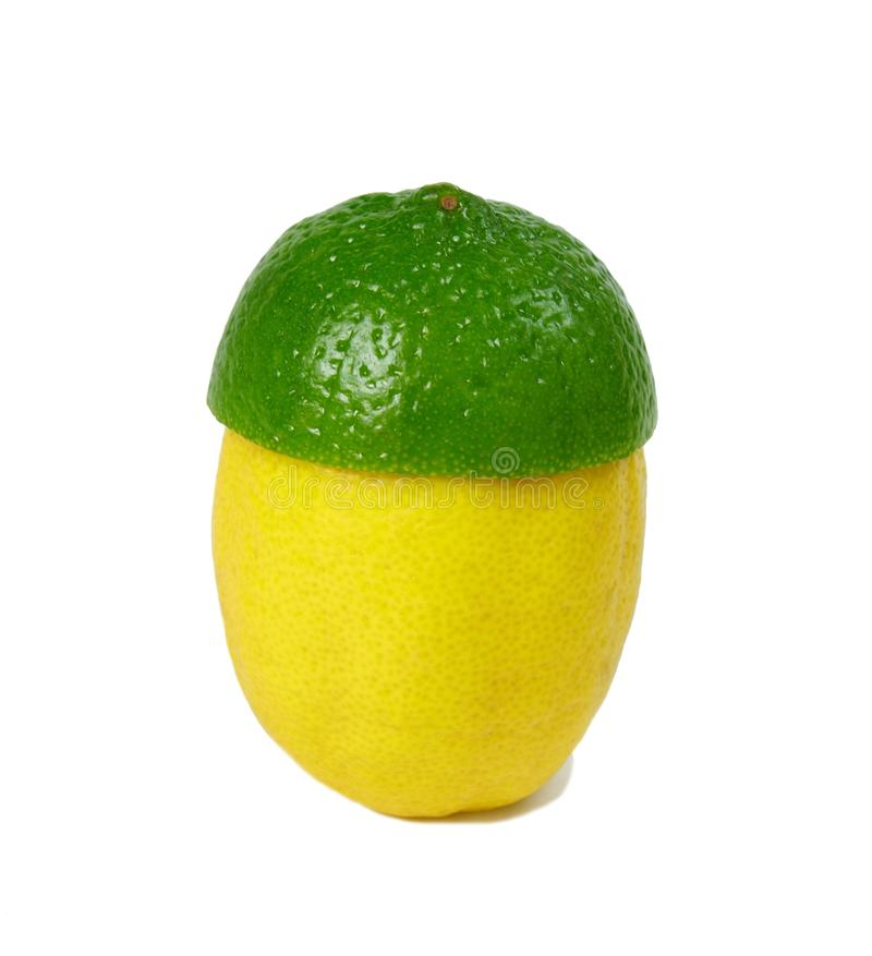 Download Lemon and lime stock photo. Image of ripe, yellow, lime - 12221048