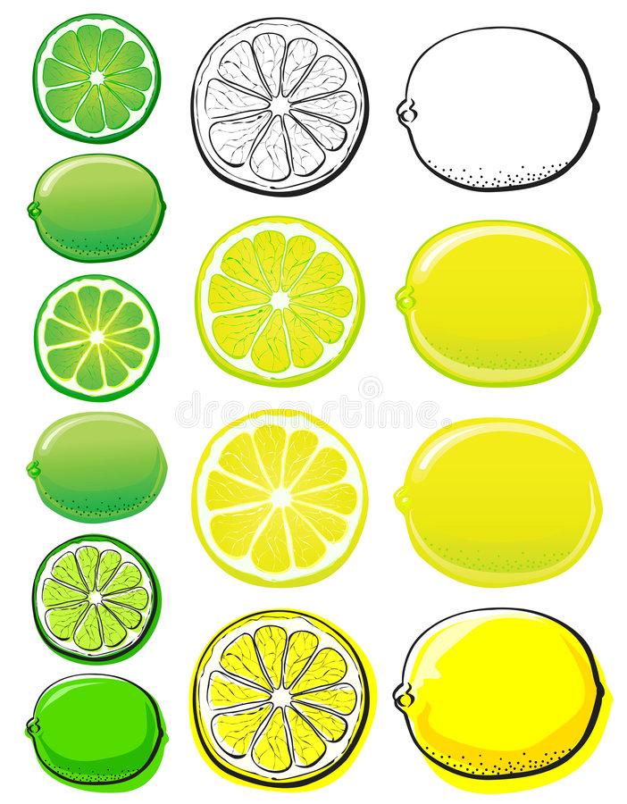 Lemon & Lime stock illustration