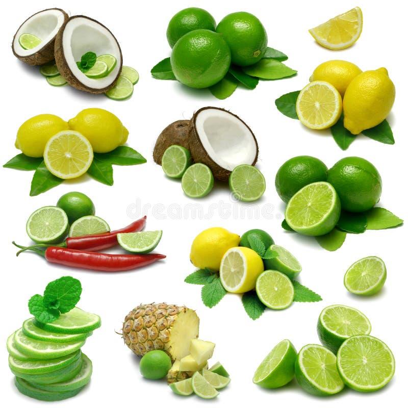 Lemon and Lime Combos stock image
