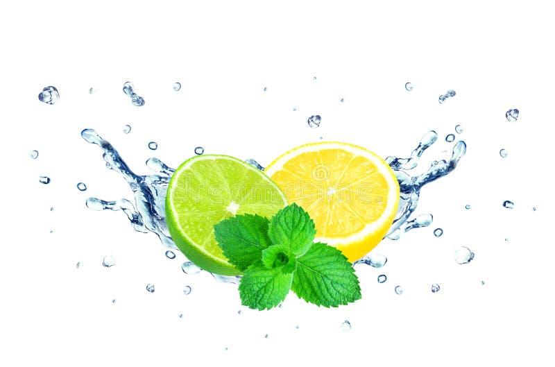 Lemon and lime splash royalty free stock image
