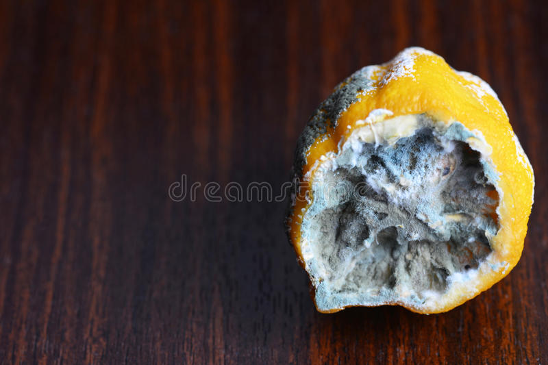 The lemon in the mold on the table stock photos
