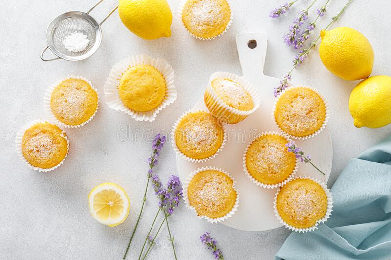 Lemon muffins with sugar powder stock images