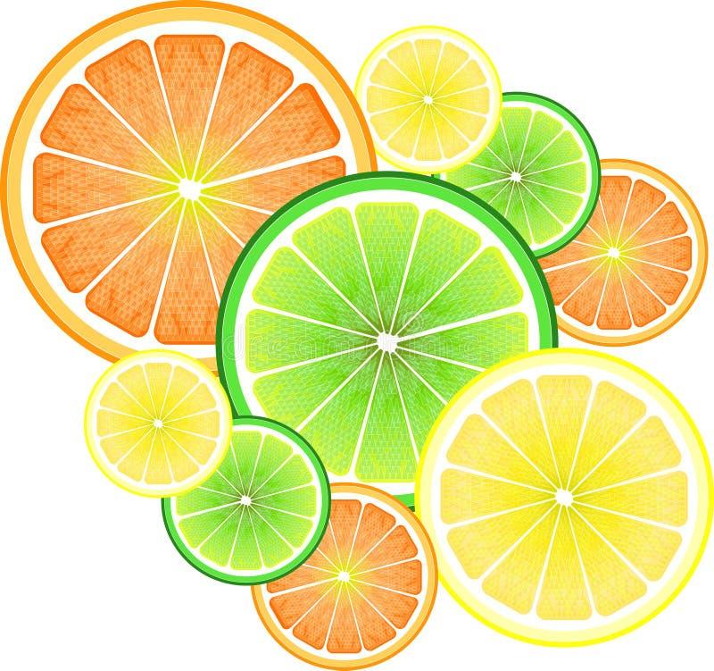 Lemon, orange and lime vector illustration