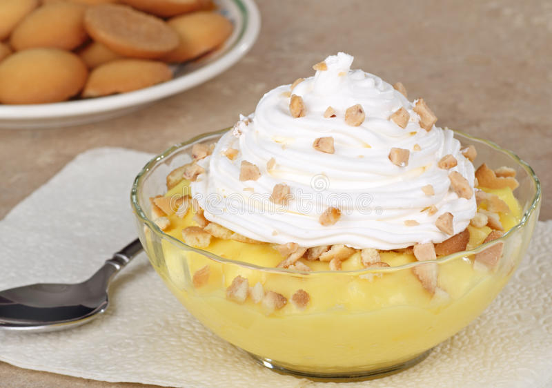 Lemon Pudding Dessert. Lemon pudding topped with whipped cream in a glass bowl royalty free stock photography