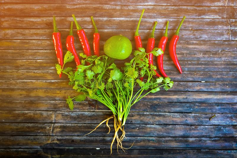 Lemon, red chillies and coriander, Thai food ingredients stock photography