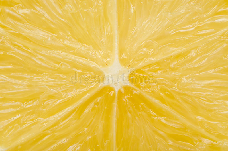 Download Lemon Section stock image. Image of delicious, diet, detail - 28089473