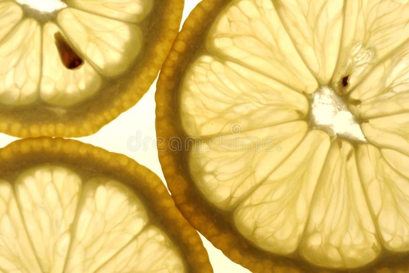 lemon segmenty zdjęcie stock