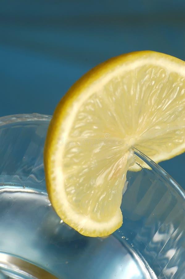 Lemon Slice Free Stock Photos