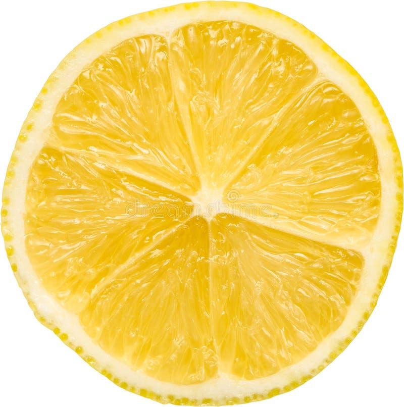 Free Lemon Slice Royalty Free Stock Photography - 28088897
