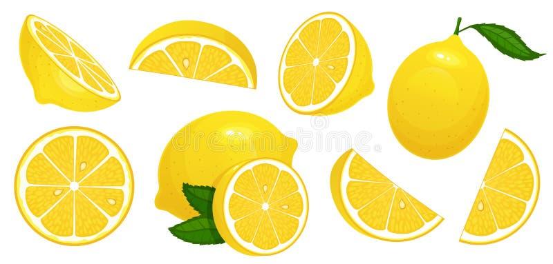 Lemon slices. Fresh citrus, half sliced lemons and chopped lemon isolated cartoon vector illustration set. Lemon slices. Fresh citrus, half sliced lemons and royalty free illustration