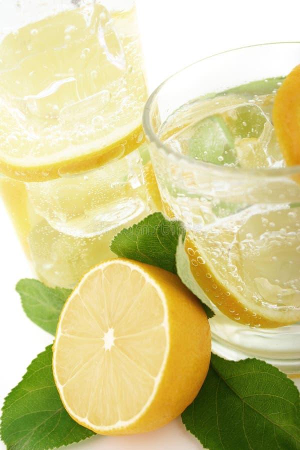 Lemon in Soda royalty free stock photo