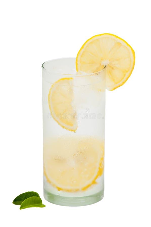 Download Lemon Squash stock image. Image of fruit, fresh, diets - 25225073