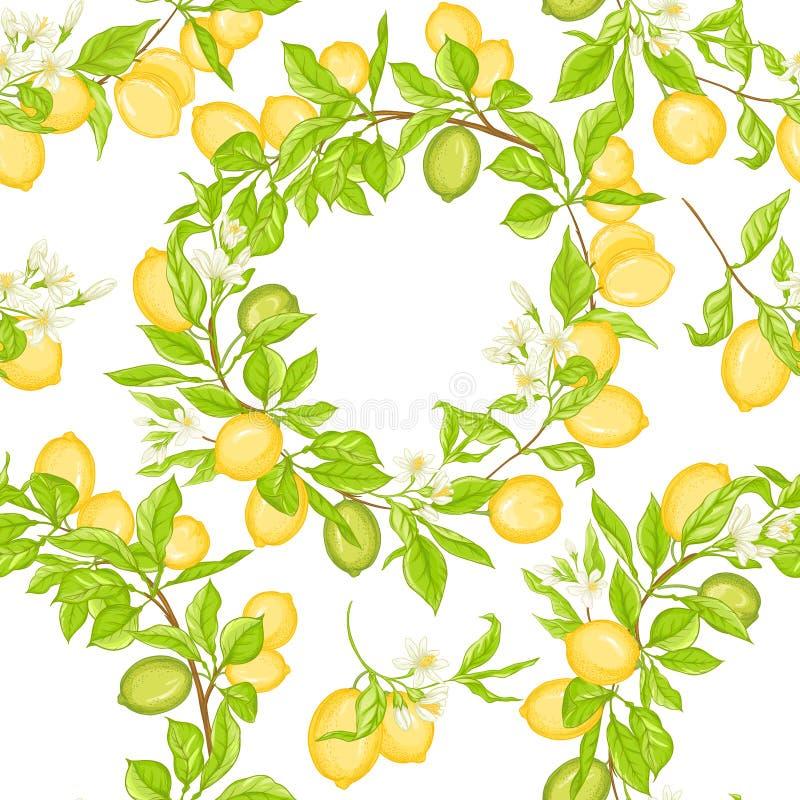 Lemon tree branch with lemons vector illustration
