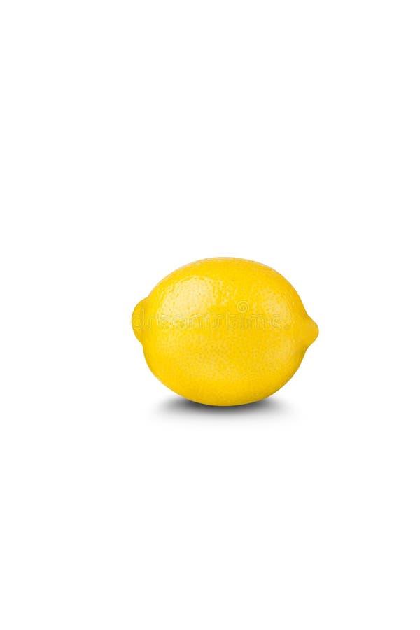 Download Lemon on white background stock photo. Image of citrus - 25644430