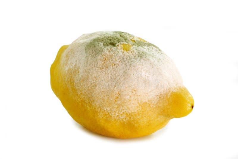 lemon, zła zdjęcia stock