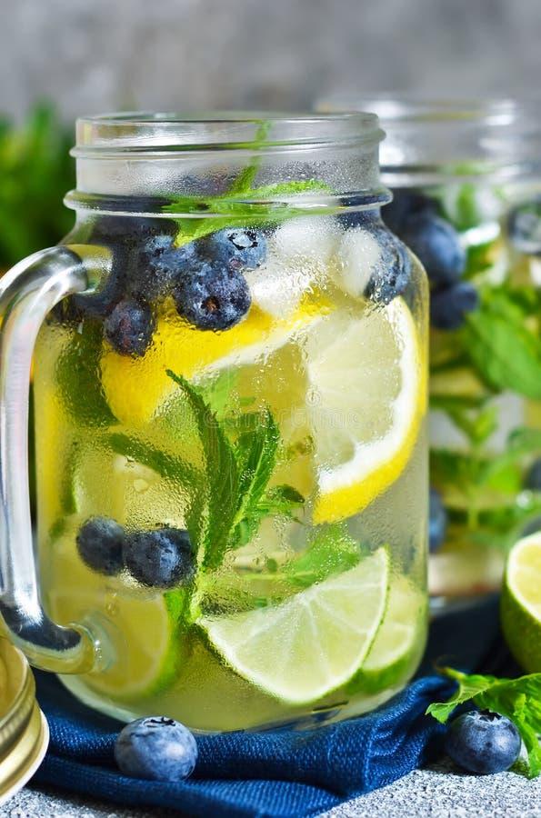 Lemonad med limefrukt, citronen och bl?b?r fotografering för bildbyråer