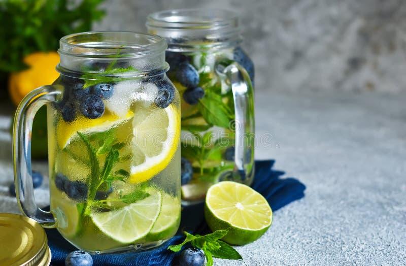 Lemonad med limefrukt, citronen och bl?b?r royaltyfri foto