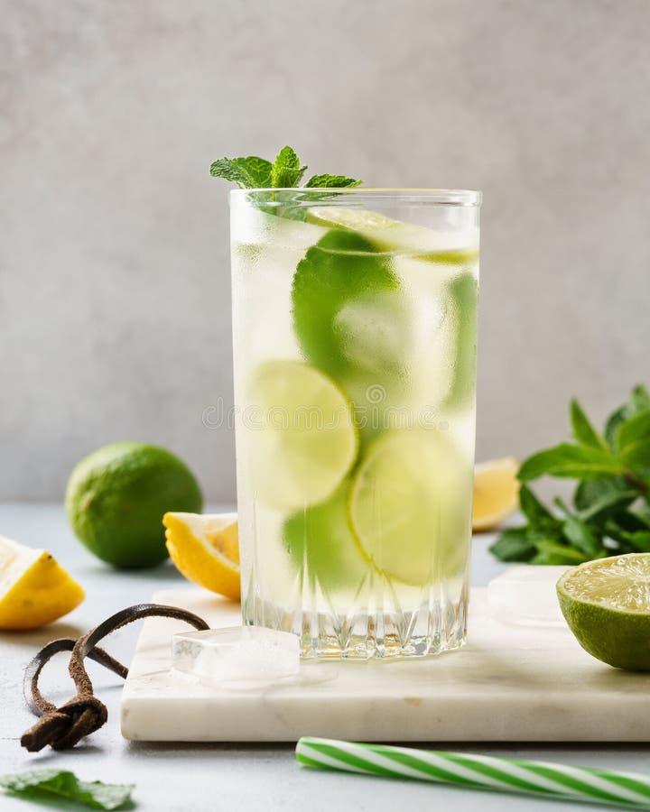 Lemonaddrink av sodavattenvatten med citronen, limefrukt och den nya mintkaramellen royaltyfria foton
