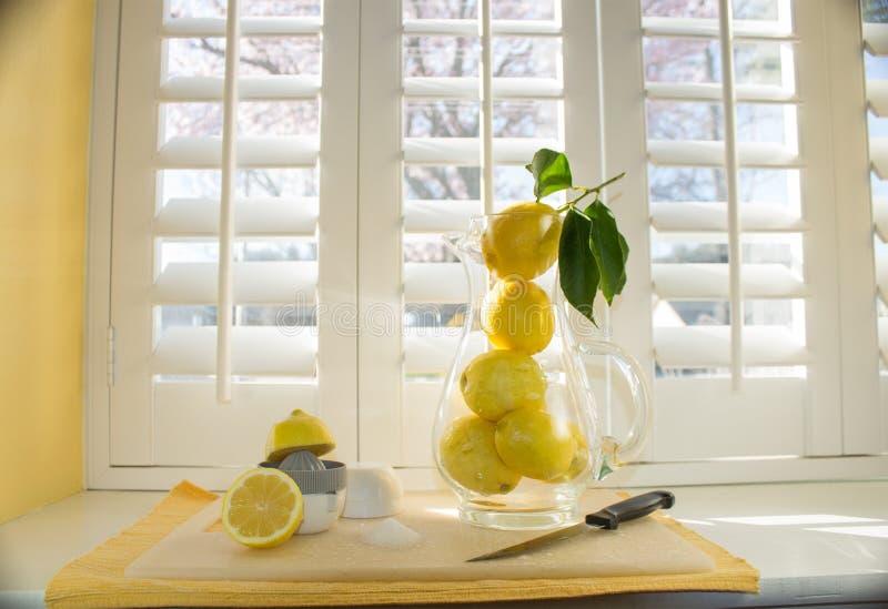 lemonade arkivfoton