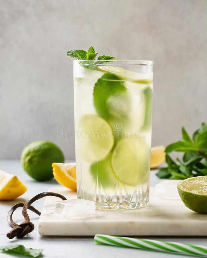 Lemonade drink of soda water with lemon, lime and fresh mint royalty free stock photos