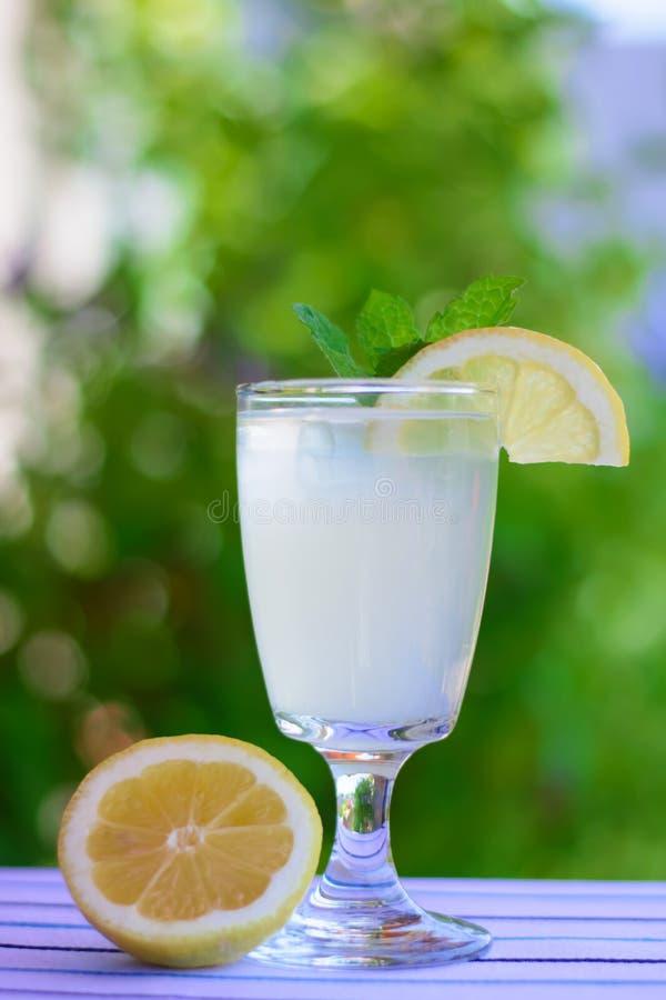 Lemonade elderberry flower royalty free stock image