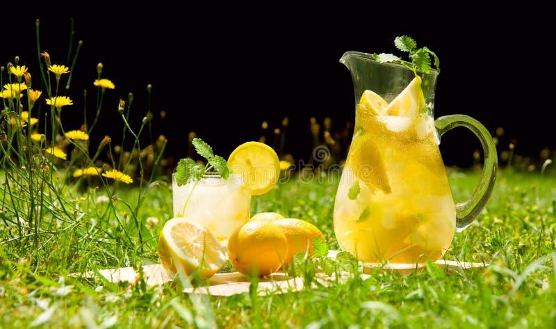 Download Lemonade in meadow stock photo. Image of nature, lemons - 15051862