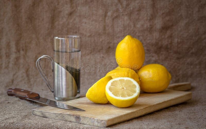 Lemonadrecept arkivbild