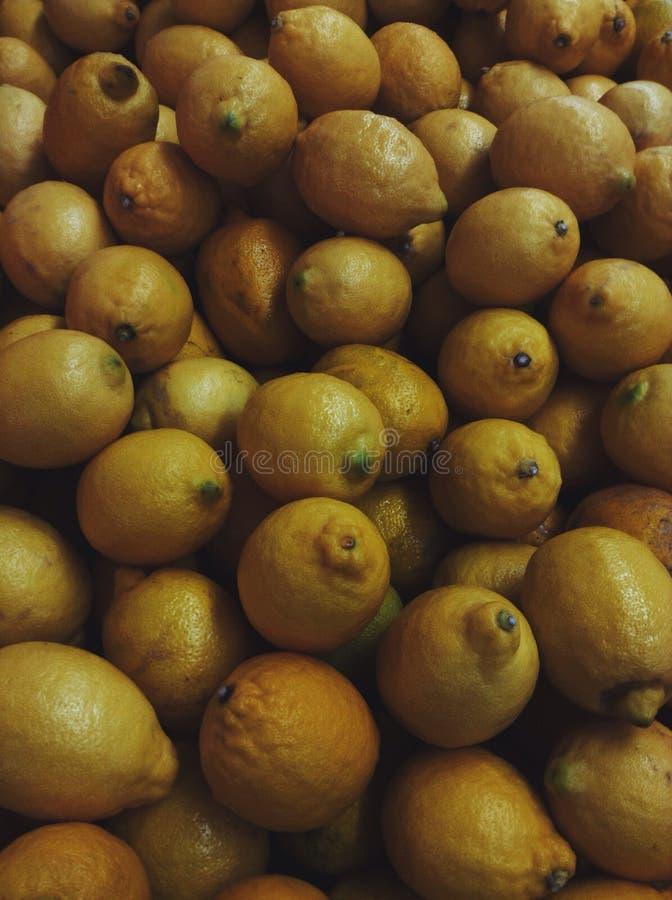 Lemone image libre de droits