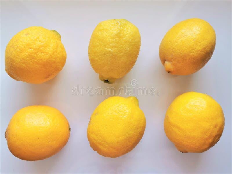 Lemones 6 limones enteros sobre un fondo blanco Vista superior Nutrición vitamínica fresca Alimentos naturales Conjunto aislado d fotos de archivo