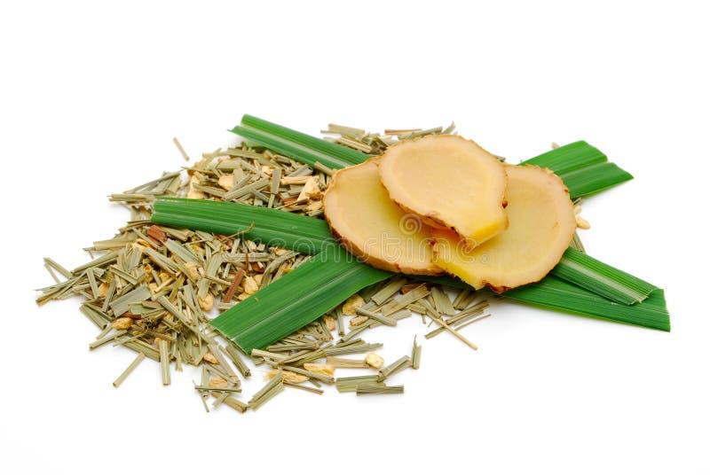 lemongrass imbirowa ziołowa herbata zdjęcie stock