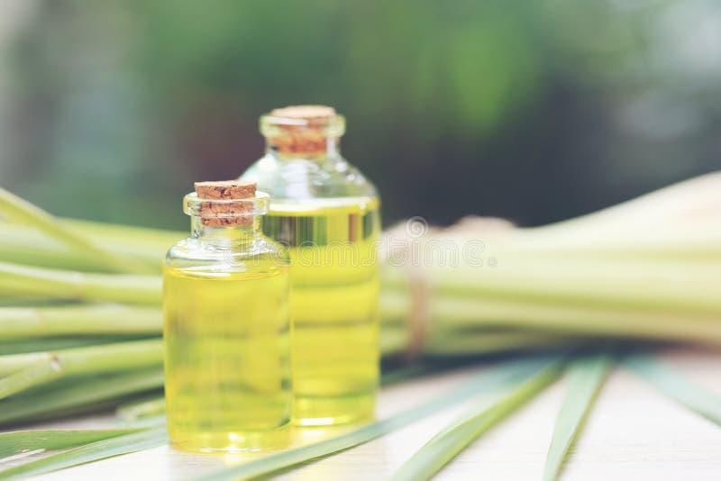 Lemongrass istotny olej w szklanych butelkach na naturalnym zielonym tle zdjęcie stock